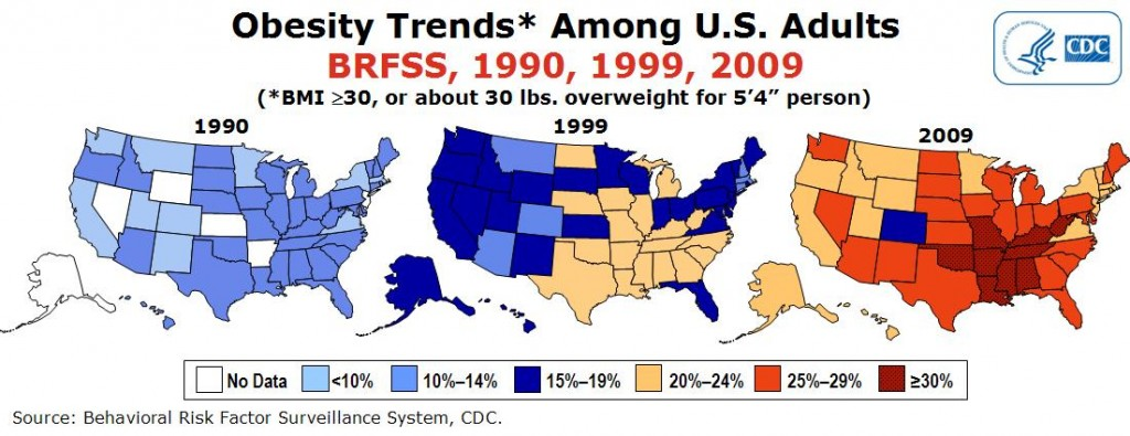 essays on obesity in america